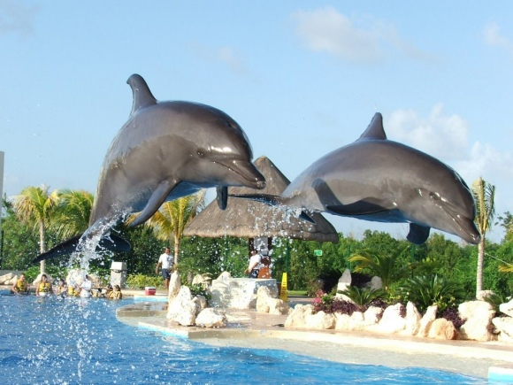 Wet N Wild Waterpark Discounted Mexico Resorts